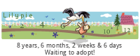 Lilypie Waiting to Adopt (o8j8)